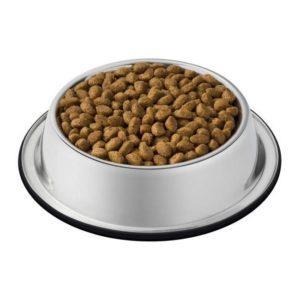 Karmy suche dla kotów